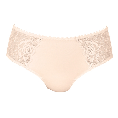 Aurelia Brief