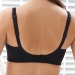 Charlotte Support Soft Cup Bra