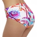 Paradise Bay Deep Gathered Bikini Briefs
